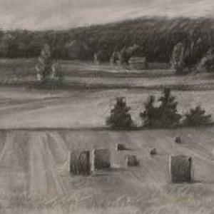 Hay rolls - Northern Michigan
